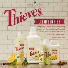 thieves-clean